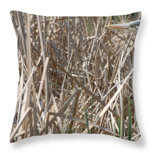 Blue Heron Throw Pillow featuring the photograph Blue Heron by Melody Jones