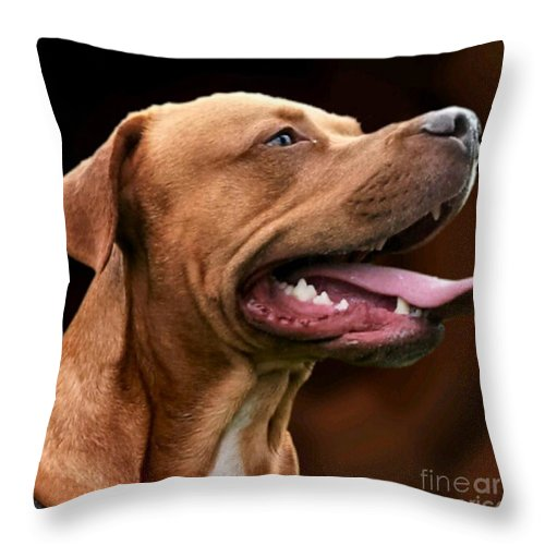 Dog Throw Pillow featuring the photograph Blue The Rhodesian by YoursByShores Isabella Shores