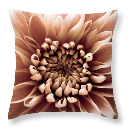 Pink Throw Pillow featuring the photograph Brown Flower by Dawn OConnor