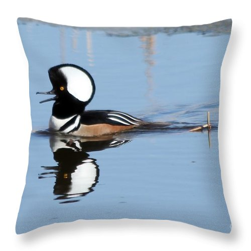 Hodded Throw Pillow featuring the photograph Call Of The Wild by Lori Tordsen