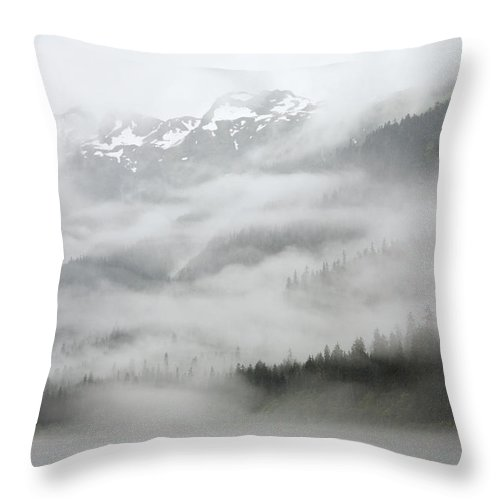 Mp Throw Pillow featuring the photograph Clouds And Mist Over Forest, Admiralty by Konrad Wothe