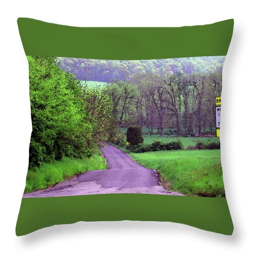 Country Throw Pillow featuring the photograph Country Road by Susan Carella