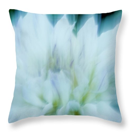 Blurred Motion Throw Pillow featuring the photograph Dancing Angels - 1 by Paul W Faust - Impressions of Light