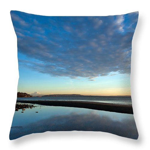 Discovery Park Throw Pillow featuring the photograph Discovery Park Reflections by Mike Reid