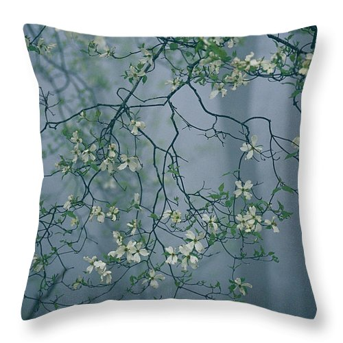 Fort Mountain State Park Throw Pillow featuring the photograph Dogwood Blossoms In A Foggy Forest by Raymond Gehman
