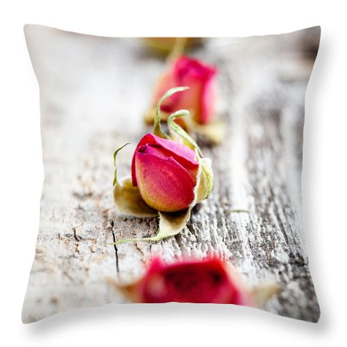 Aroma Throw Pillow featuring the photograph Dried Rose Buds by Kati Finell