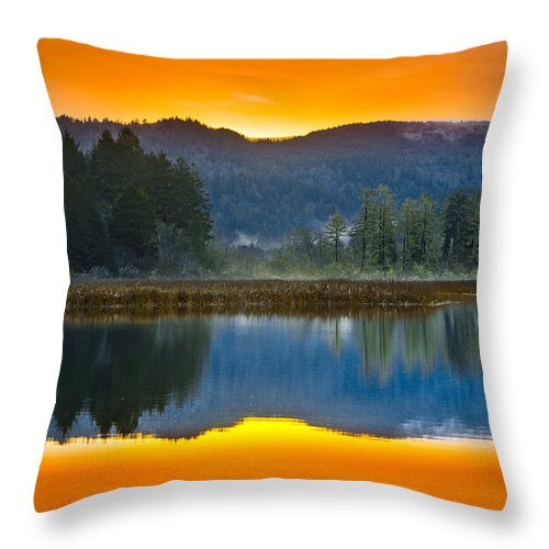 Dry Lagoon Throw Pillow featuring the photograph Dry Lagoon Dawn by Greg Nyquist
