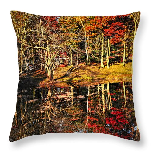 Lake Throw Pillow featuring the photograph Fall Forest Reflections by Elena Elisseeva