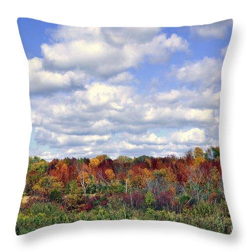 Fall Throw Pillow featuring the photograph Fall In Wisconsin by Dyana Rzentkowski