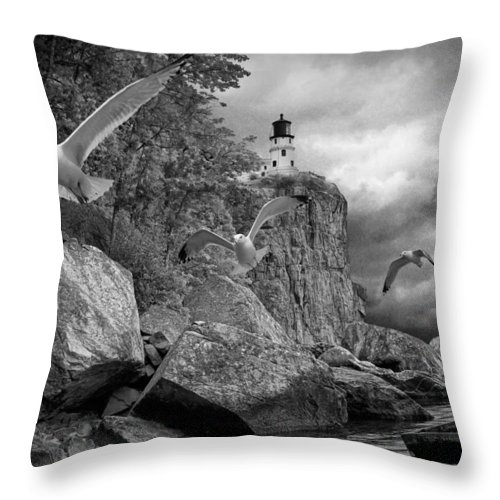 Art Throw Pillow featuring the photograph Fleeing The Coming Storm by Randall Nyhof
