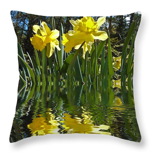 Daffodils Throw Pillow featuring the photograph Flooded Daffodils by Bill Barber