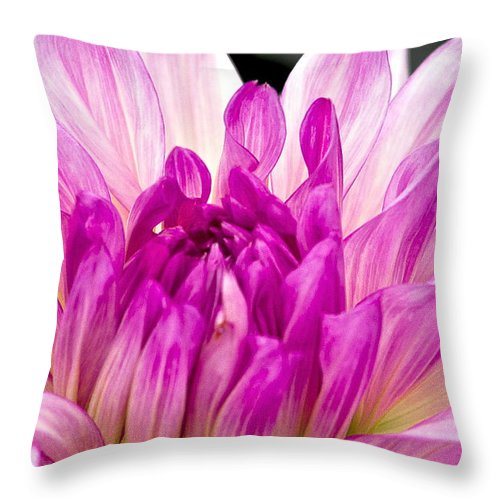 Pink And White Flower Throw Pillow featuring the photograph Flower 11 by Burney Lieberman
