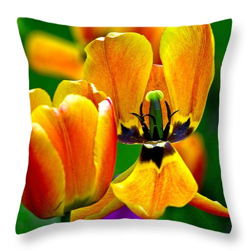Throw Pillow featuring the photograph Flower 3 by Burney Lieberman