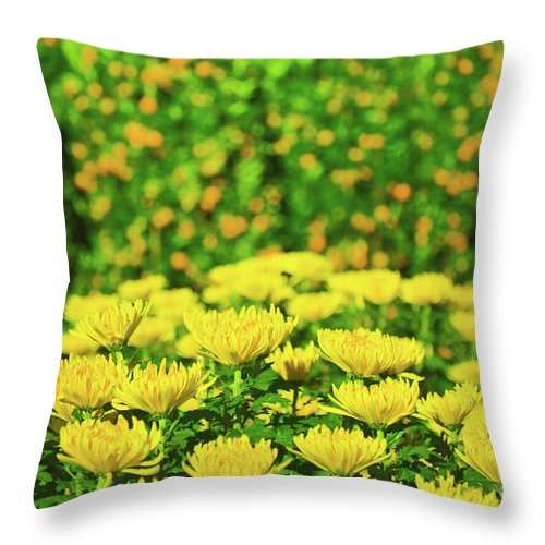 Flowers Throw Pillow featuring the photograph Flower Market by MotHaiBaPhoto Prints