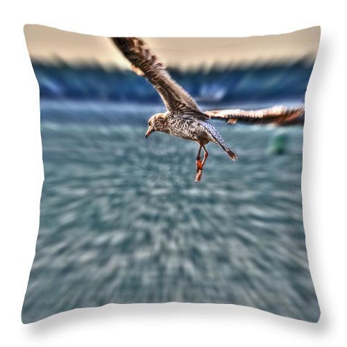 Throw Pillow featuring the photograph Focused by Michael Frank Jr
