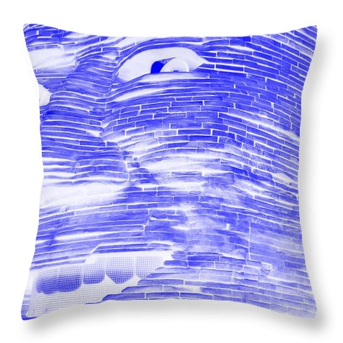 Architecture Throw Pillow featuring the photograph Gentle Giant In Negative Blue by Rob Hans