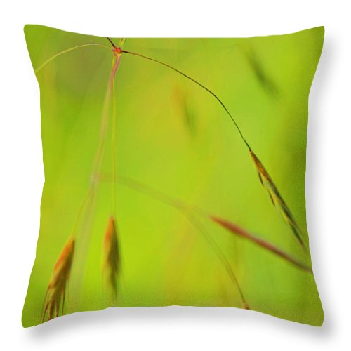 Chartreuse Throw Pillow featuring the photograph Good Morning by Bonnie Bruno