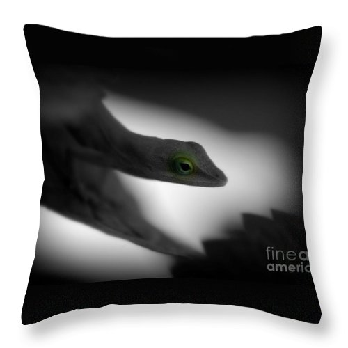 Green Throw Pillow featuring the photograph Green With Envy by Donna Bentley
