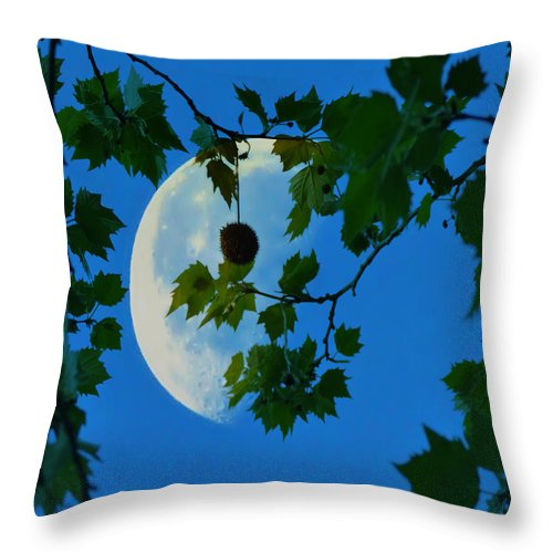 Half Throw Pillow featuring the photograph Half Moon by Bill Cannon