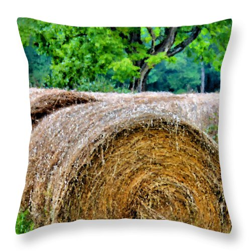 Hay Throw Pillow featuring the photograph Hay Rolls by Kristin Elmquist