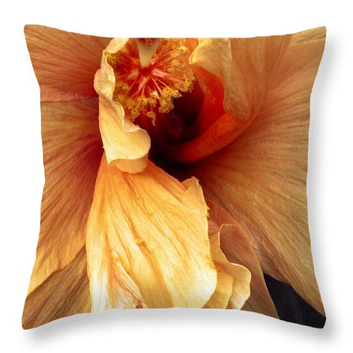 Hibiscus Throw Pillow featuring the photograph Hibiscus Interior by Nancy Griswold