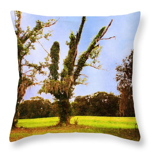 Hope Throw Pillow featuring the photograph Hope For Tomorrow by Ester Rogers