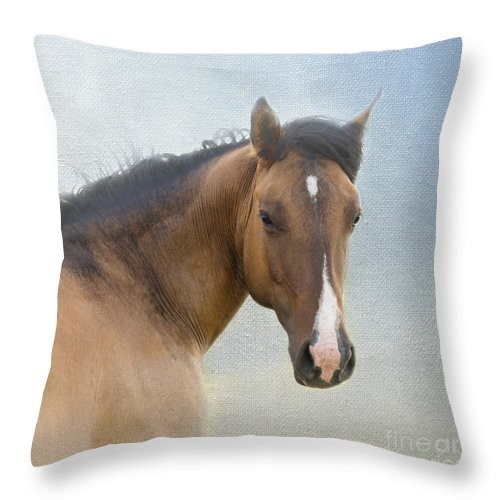 Horse Throw Pillow featuring the photograph I Walk In Beauty by Betty LaRue