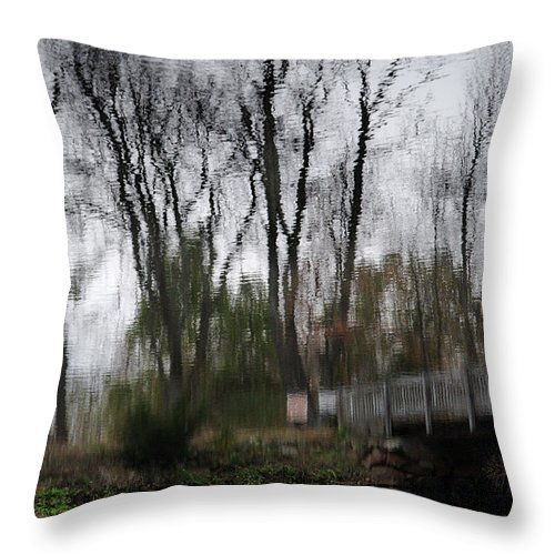 Autumn Throw Pillow featuring the photograph Impression Of Winter by Barry Doherty