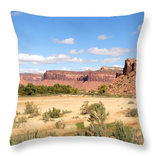 Fine Art Photography Throw Pillow featuring the photograph Land Of Many Canyons by David Lee Thompson