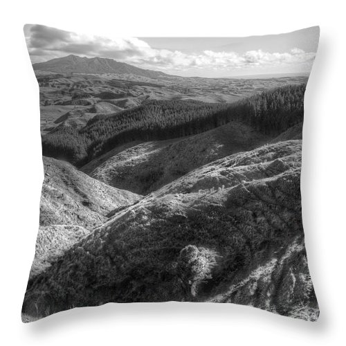 Beauty In Nature Throw Pillow featuring the photograph Landscape by Les Cunliffe