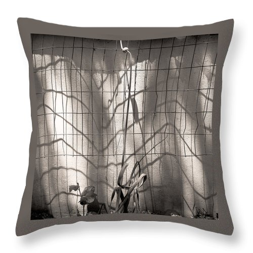 Light Throw Pillow featuring the photograph Light And Shadow by Ted M Tubbs