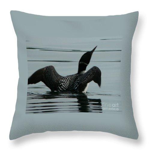Birds Throw Pillow featuring the photograph Loon by Judi Deziel