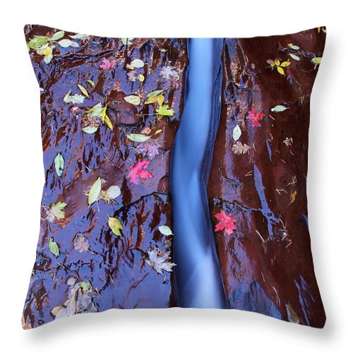 Utah Throw Pillow featuring the photograph Maple Leaves by Susan Rovira
