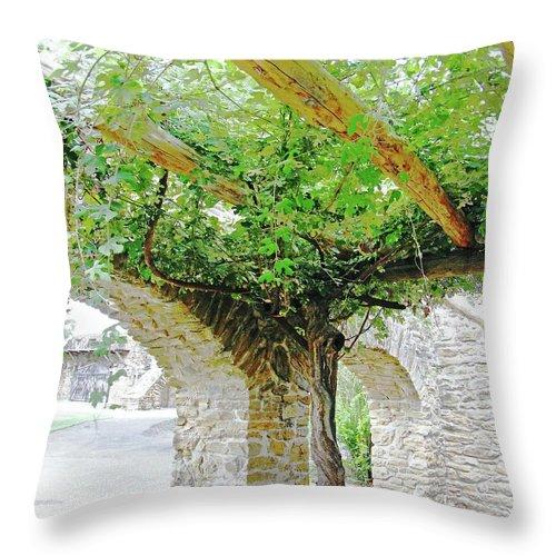 Vine Throw Pillow featuring the digital art Mission San Jose San Antonio Texas by Lizi Beard-Ward