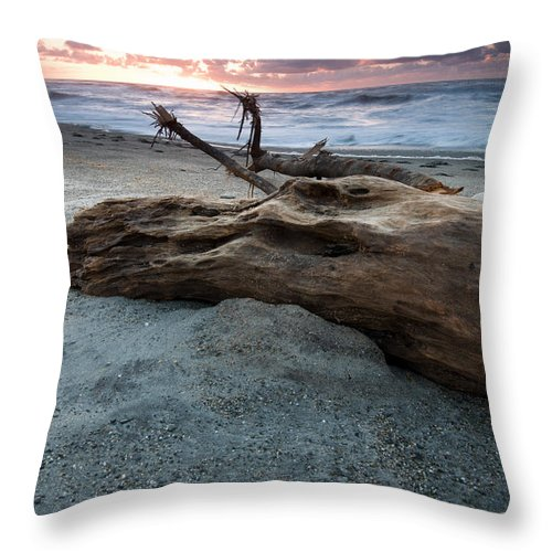 Beach Throw Pillow featuring the photograph Old Tree Trunk On A Beach by U Schade