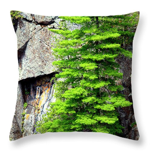 Photography Throw Pillow featuring the photograph On The Rocks by Jale Fancey