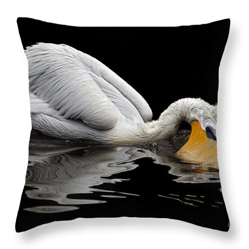 Dalmatian Pelican Throw Pillow featuring the photograph Oral Hygiene by Michal Boubin