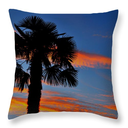 Palm Tree Throw Pillow featuring the photograph Palm Tree by Mats Silvan