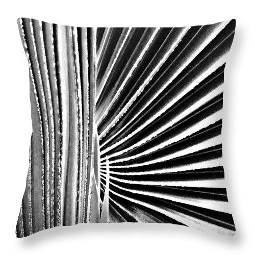 Palmetto Throw Pillow featuring the digital art Palmetto by Lizi Beard-Ward