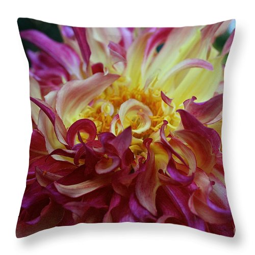Outdoors Throw Pillow featuring the photograph Pink Curls by Susan Herber