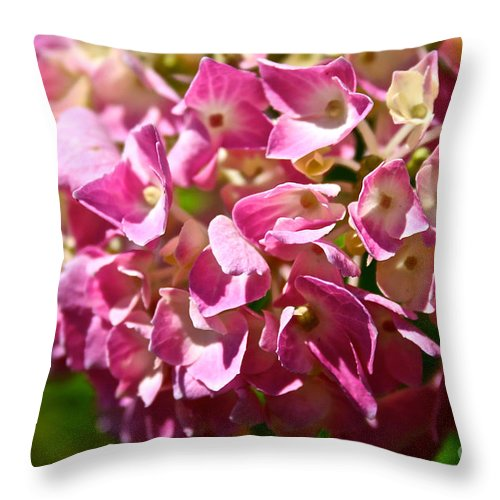 Outdoors Throw Pillow featuring the photograph Pink Party by Susan Herber