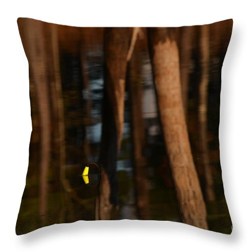 Reflection Throw Pillow featuring the photograph Reflection by Donna Brown