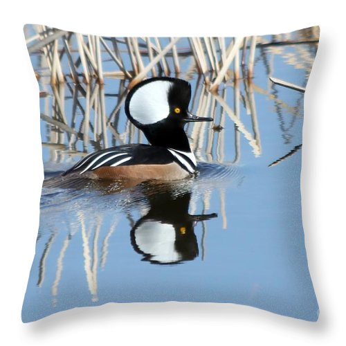 Hodded Throw Pillow featuring the photograph Reflections by Lori Tordsen