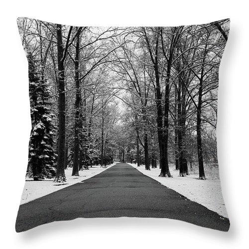 Rachel Cohen Throw Pillow featuring the photograph Reverse by Rachel Cohen