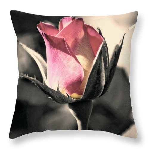 Digitally Hand Colored Throw Pillow featuring the photograph Rita Rosebud Pink by Linda Dunn