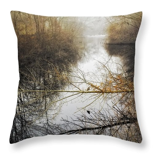 Landscape Throw Pillow featuring the photograph River In The Fog by Fran Gallogly