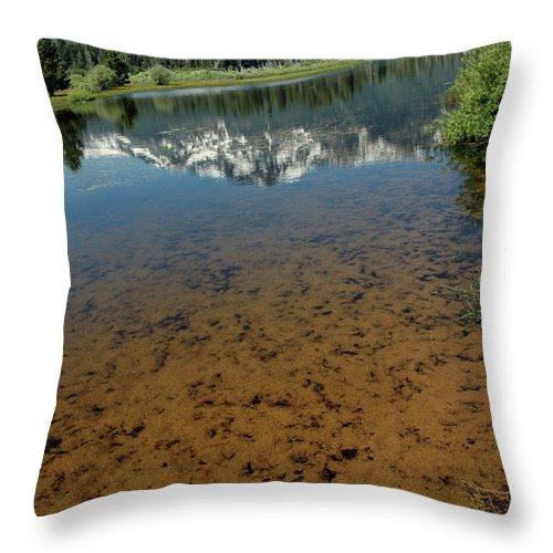 Usa Throw Pillow featuring the photograph Shallow Water Reflections by LeeAnn McLaneGoetz McLaneGoetzStudioLLCcom