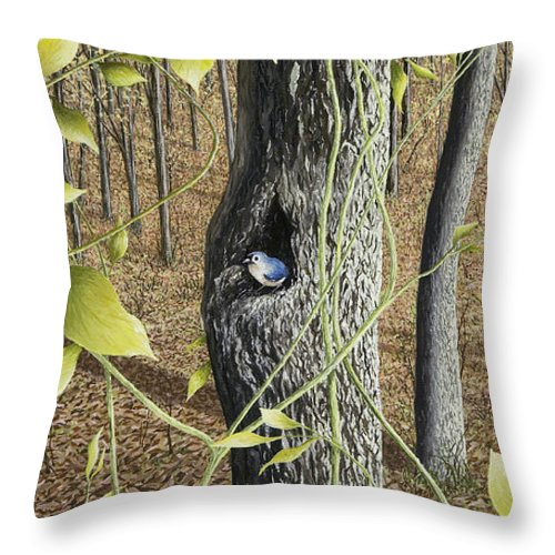 Bird Paintings Throw Pillow featuring the painting Springtime At Collins Creek by Mary Ann King