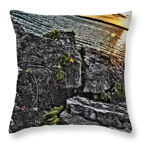 Throw Pillow featuring the photograph Sunset Please On The Rocks by Michael Frank Jr