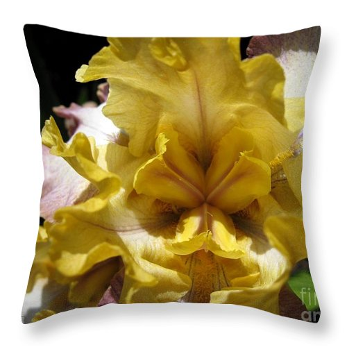 Tall Bearded Iris Throw Pillow featuring the photograph Tall Bearded Iris Named Butterfingers by J McCombie